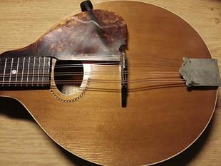 priser landola gitar